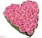Коханій (33 рожеві троянди) - 1