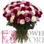 101 кольорова троянда - 1